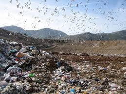 Rifiuti, la Corte europea condanna il Lazio: inadempienze per le discariche