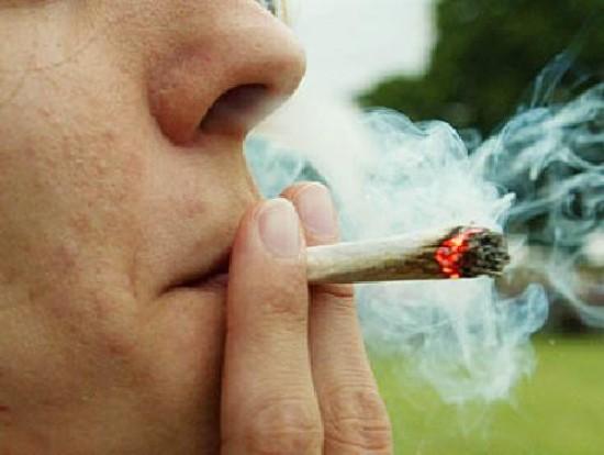Cannabis, al Gemelli nasce un ambulatorio per curare la dipendenza