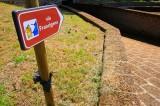 """Viterbo, Google inserirà la Via Francigena sulle mappe digitali di """"Street View"""""""
