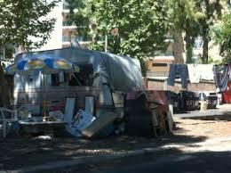 COLLI PORTUENSI/Baracche abusive in via Newton, denunciati in nove