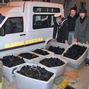 Santa Marinella, sequestrati ricci di mare: multa da 4mila euro