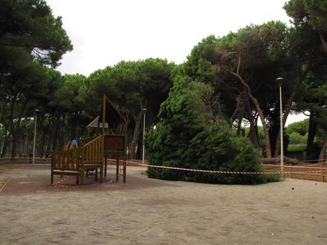 OSTIA/Spacciava marijuana in parco: arrestato pusher 19enne