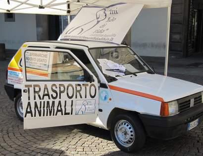 VITERBO/Arriva l'ambulanza per gli animali
