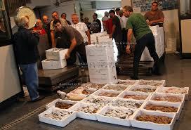 Fiumicino, oltre 100 chili di pesce sequestrati: erano destinati ai ristoranti romani