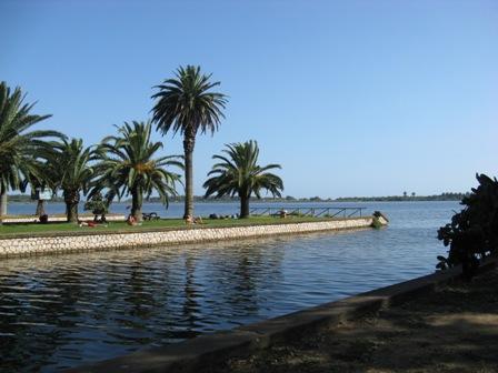 Un pezzo d'Africa sul litorale pontino