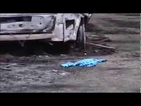 Castelli, un'auto va a fuoco per colpa di una griglia. Paura nella pineta tra Nemi e Velletri