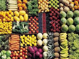 Il cibo come fonte di vita, ma anche cura e prevenzione: la ricerca del Gemelli