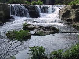 Parco di Veio, sequestrata mega discarica nell'area verde