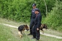 Donna scomparsa in Cicoria: amici e volontari continuano le ricerche. Il fratello: