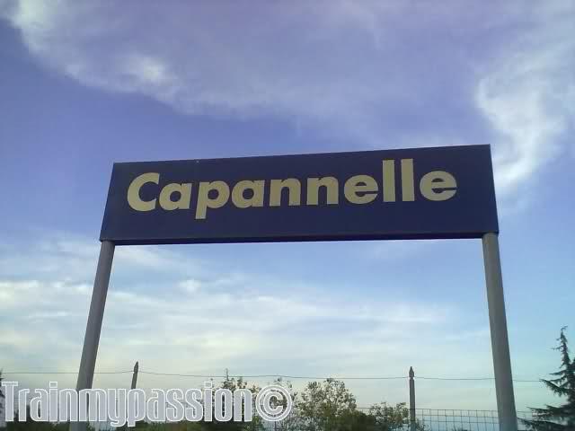 Capannelle, un incendio ha rallentato i treni regionali: ritardi fino a 45 minuti
