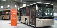 Giubileo, pubblicato il bando per i 150 bus