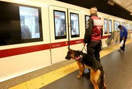 Metro, controlli anti-borseggio: 14 arresti in poche ore