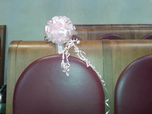 Fiocco rosa in assemblea capitolina per la figlia di Di Biase e Franceschini