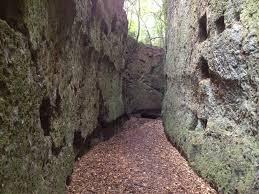 Tra storia e sensi sulla via degli Etruschi
