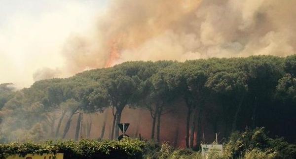 Fiumicino, allarme incendi: 7 incendi in pochi giorni