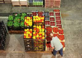 Le mani della mafia sulla frutta: 20 arresti tra Lazio, Campania e Sicilia
