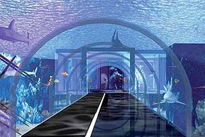 Roma avrà il suo aquarium: aprirà in primavera all'Eur