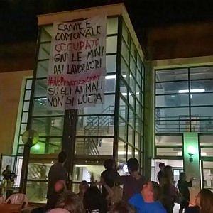 Ex cinodromo, gli operatori dei canili barricati per protesta
