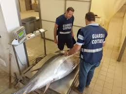 Sequestrati oltre tre quintali di tonno
