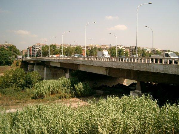 Ponte Marconi, donna tenta il suicidio: salvata da un agente
