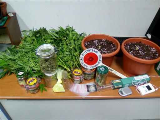 Droga, arresti per spaccio di cocaina: arresti e ossi di seppia sequestrati, servivano per tagliare ...