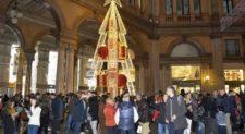 Galleria Alberto Sordi, l'ad di Sorgente Mainetti accende l'albero di Natale