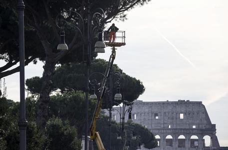A Roma 320 mila alberi ma manca la cura