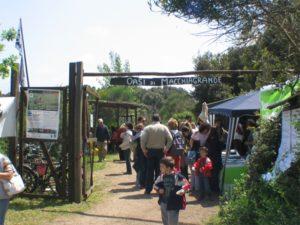 FIUMICINO - Oasi WWF 50 per cento di visite in meno