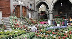 """VITERBO – Sta per partire """"San Pellegrino in fiore"""""""