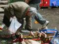 Caritas e 'Povertà nascoste': 40mila interventi nel 2016