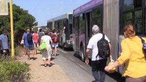 bus_mare_litorale