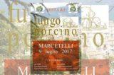 Sagra del porcino il 9 luglio a Marcetelli