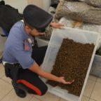 Blitz a Roma dei carabinieri: 4 arresti e oltre 300 chili di droga sequestrati