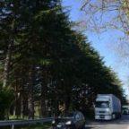 Autovelox fuorilegge? Due sequestrati sulla Cassia a Campagnano
