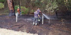 SABAUDIA – Ancora un incendio nella foresta del Parco