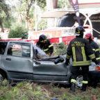 Pino cade in via Germania, distrutte 4 auto, paura tra i passanti
