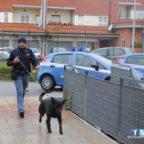BORGHESIANA - Appartamento come base di spaccio: 2 arresti