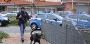 BORGHESIANA – Appartamento come base di spaccio: 2 arresti