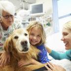 RIETI - Per la prima volta cani addestrati in corsia per giocare con i bambini ricoverati in ospedal...