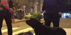 Termini, Tiburtina e i luoghi della movida: i carabinieri arrestano 15 persone
