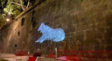 Roma, a Piazza Tevere torneo le lupe sui muraglioni del fiume