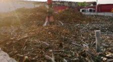 Tmb Rocca Cencia, i camion Ama rallentano lo scarico dei rifiuti