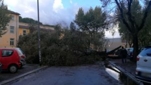 villa gordiani-5-10-1