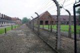 """Giorno della Memoria: A Roma la mostra """"Dall'Italia a Auschwitz"""""""